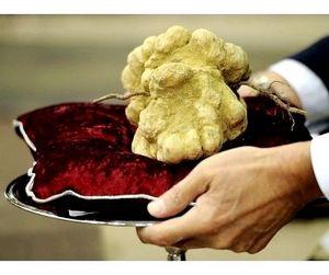 Владимир Потанин купил самый дорогой гриб в мире