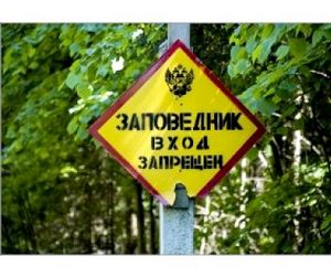 11 января  в России отмечается день заповедников