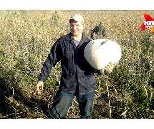 Для грибов оказались малы и ведра и корзины