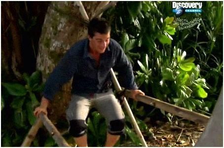 Укрытие в джунглях