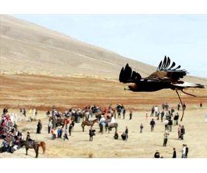 В Кыргызстане появился закон «Об охоте и охотничьем хозяйстве»