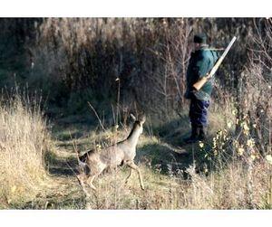 Омский охотник подал в суд на губернатора