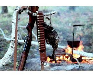 С начала года в области выявлено 191 нарушение правил охоты