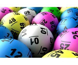 Спекуляцию охотничьими путевками в Новосибирской области решили заменить лотереей