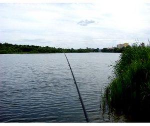 Где и за сколько можно порыбачить в Пензенской области
