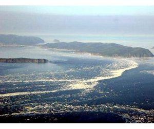 Шантарские острова теперь национальный парк