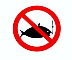 В Коми запрещён лов рыбы
