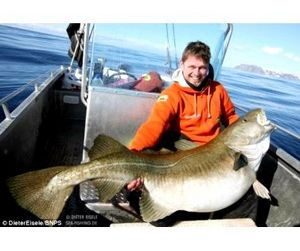 Треска-великан покорилась немецкому рыбаку