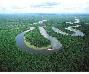 21 марта - Международный день лесов по календарю ООН