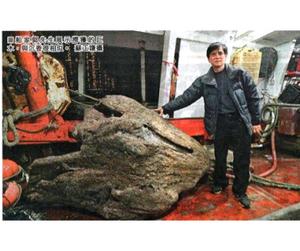 Несъедобный улов принёс китайскому рыбаку миллионы
