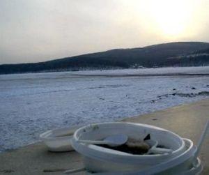 Фестиваль Народная рыбалка во Владивостоке оставил после себя горы мусора