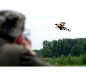 Астраханская область открывает сезон охоты