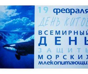 19 февраля - Всемирный день защиты китов