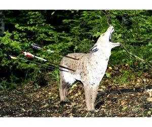 Охоту с луком в Латвии всё же запретили