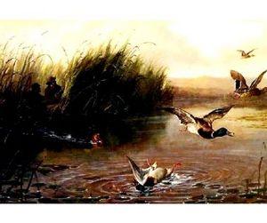 С девятого августа разрешается летне-осенняя охота на пернатую дичь