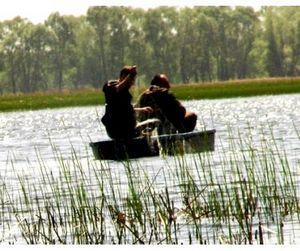 Браконьеры-убийцы пойманы в Алтайском крае