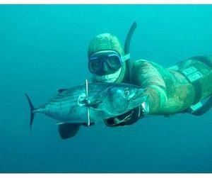Наши на Чемпионате мира по подводной охоте