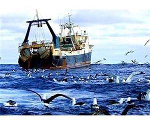 Вступили в действие новые правила рыболовства для Азово-Черноморского рыбохозяйственного бассейна