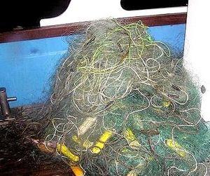 Псковское озеро почистили от браконьерских сетей
