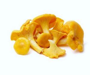 Время собирать грибы