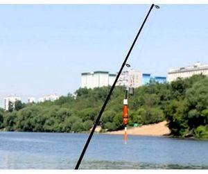 Рыбак погиб в Ярославской области, задев удочкой ЛЭП