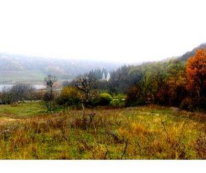 Украинские леса могут лишиться охотников