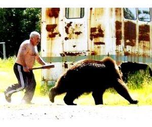 Медведь поплатился жизнью за разграбленную пасеку в Томской области