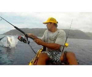 Акула и рыбак не поделили добычу - видео