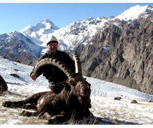В Кыргызстане принят новый закон об охоте