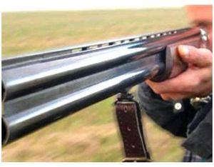 Проверка качества ружья