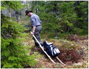 Изготовление санок для перевозки грузов по лесу