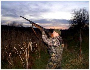 Охота и стрельба в темное время суток