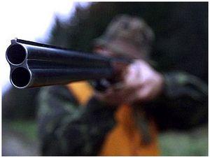 Какая мушка нужна для охотничьего ружья?