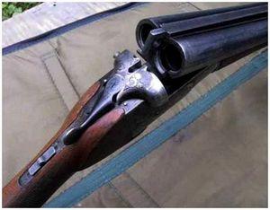 Выбор дробового ружья для летних и осенних охот