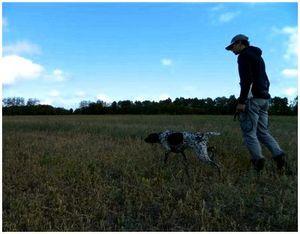 """Отработка с собакой поиска """"челноком"""" и замедленного хода"""