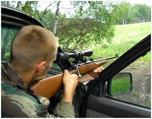 Основы загонной охоты