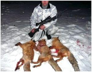 Охота на зайца и лису с нарезным оружием
