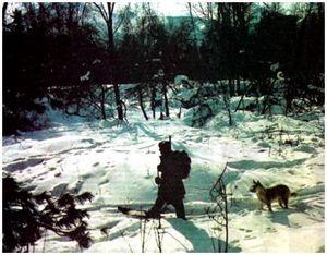 Охота в сибирской тайге
