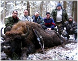 История развития охоты в Беларуси