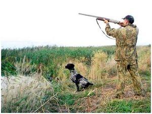 Правила пользования охотничьим ружьем