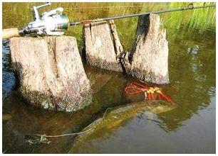 Секреты рыбака