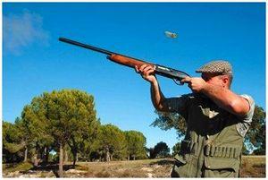 Способы стрельбы по быстро летящим целям
