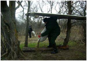 Защита и охрана птиц