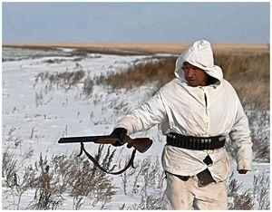 Зимняя охота на пушного зверя