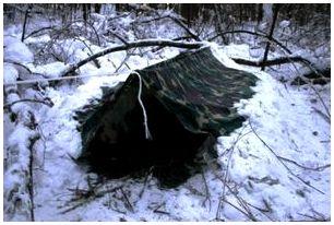 Ночевка в лесу