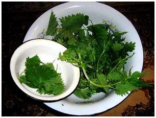 Приготовление пищи из растений