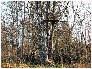 Как построить засидку на дереве