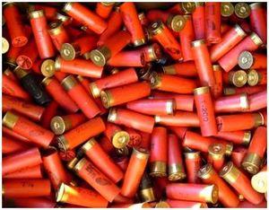 Оружие и боеприпасы для охоты на косулю