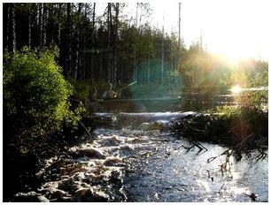Препятствия на реке