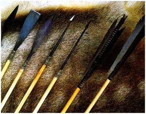 Виды стрел для охотничьего лука